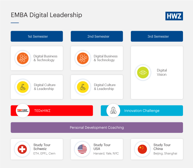 EMBA Digital Leadership Modell englisch